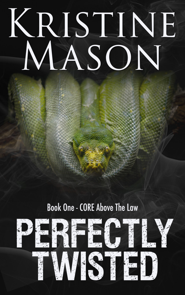 Perfectly Twisted-Amazon